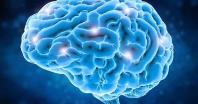 best neurosurgeons